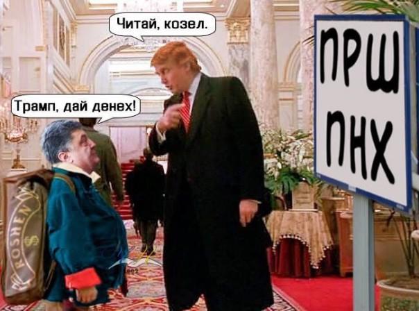 Картинки по запросу Трамп послал жида Порошенко НАХ..